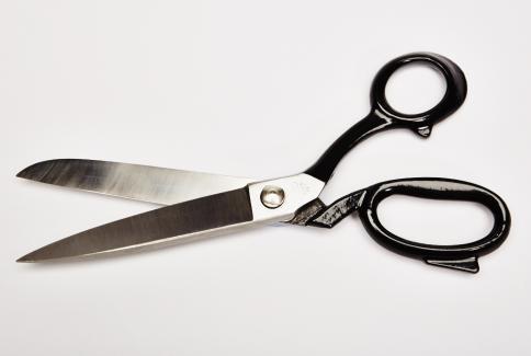 Tailors shears